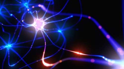 Ce réseau de neurones artificiels est capable de produire une réponse consciente