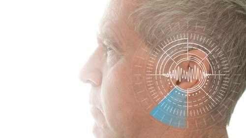 Les humains peuvent apprendre à écholocaliser efficacement en dix semaines seulement