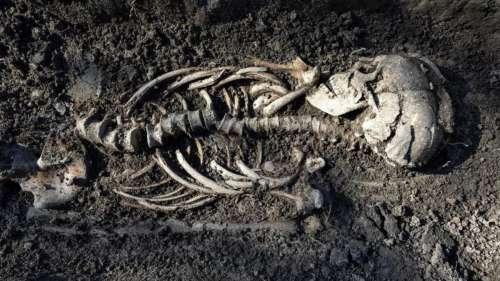 Les squelettes de jumeaux vikings retrouvés dans une tombe chrétienne en Suède