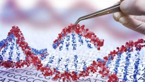 L'édition génétique utilisée pour traiter une maladie rare dans un essai de phase 1 prometteur