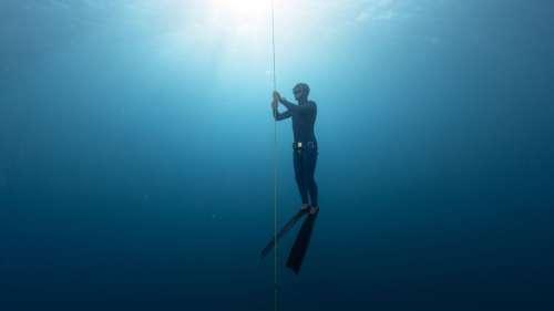 Le saviez-vous ? Le rythme cardiaque des plongeurs en apnée peut chuter à 11 battements par minute