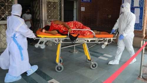 Le virus mortel Nipah tue un garçon en Inde et fait craindre une épidémie