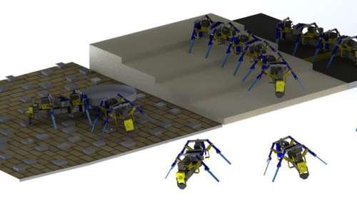Ces robots quadrupèdes inspirés des fourmis s'unissent pour franchir des obstacles