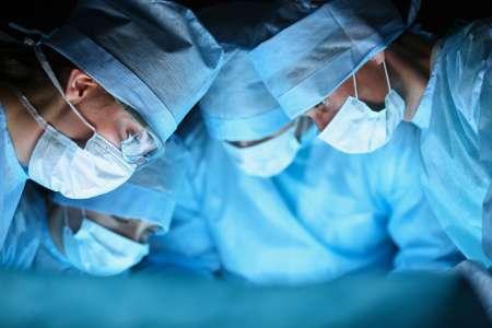 Greffe d'organes : zoom sur la reprise d'activité