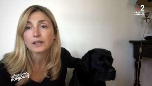 Julie Gayet fait une apparition surprise avec Philae, le chien de François Hollande, sur France 2