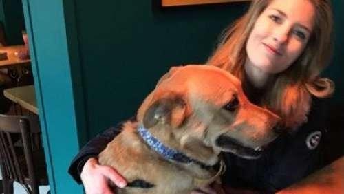 Aleksandra Prykowska défigurée : le refuge où elle a adopté son chien a-t-il menti ?