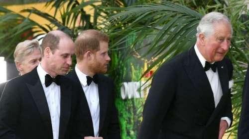 Prince Harry : comment l'entourage de son frère a tenté de lui nuire en se servant de l'interview désastreuse du prince Andrew