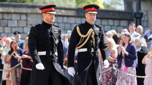 Prince Harry rancunier : ce lapin posé à son frère William après une grosse dispute