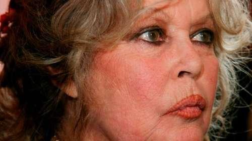 Affaire Elisa Pilarski : Brigitte Bardot prend la défense du chien Curtis qui l'aurait tuée