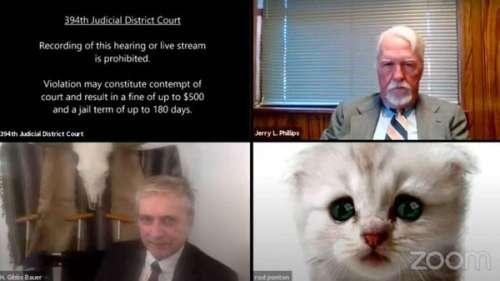 Zoom : un avocat coincé avec un filtre chat provoque une situation burlesque en pleine réunion