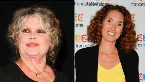 """""""A croire qu'elle touche un pourcentage"""" : Brigitte Bardot s'en prend vertement à Marie-Sophie Lacarrau"""