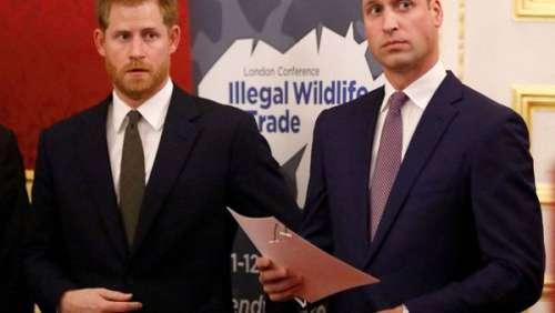 Prince Harry : cette allusion à son frère William en plein discours surprise avant l'hommage à Diana