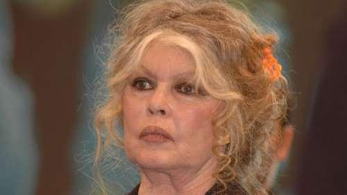 Brigitte Bardot : pourquoi a-t-elle été condamnée à une amende de 5.000 euros ?