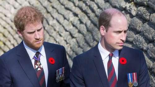 Harry et William : cet événement important pour lequel ils pourraient faire la paix