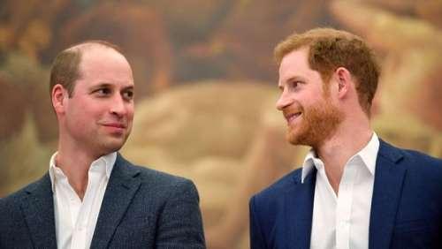Harry et William : les deux frères rendent hommage à leur grand père, le prince Philip, dans un documentaire poignant