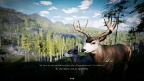 Hunting Simulator – La chasse à l'état pur