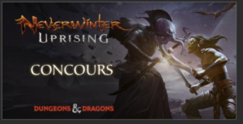 Neverwinter – Distribution Don du couturier (PC)
