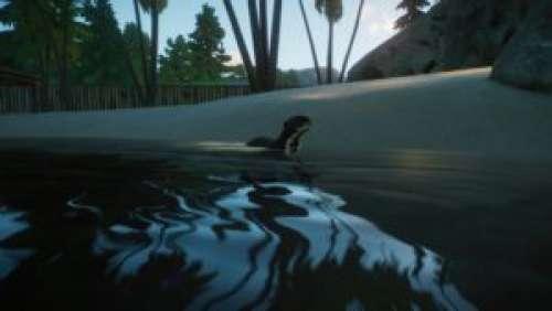Planet Zoo – DLC Aquatique