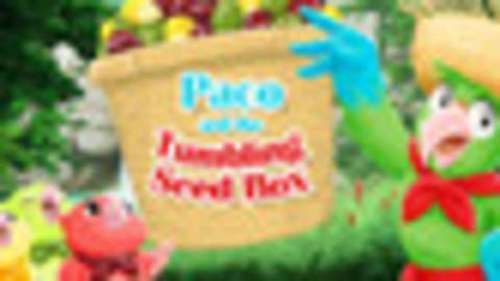 Paco and the Tumbling Seed Box