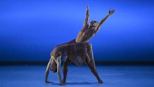 Face au Covid, la danse se met au pas de deux