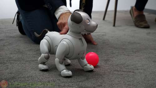 Sony Wants To Build A Robot That Can One Day Win Its Own Nobel Prize