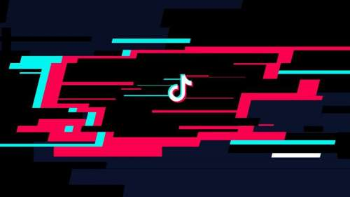 TikTok Now Lets Users Mute Others During A Livestream