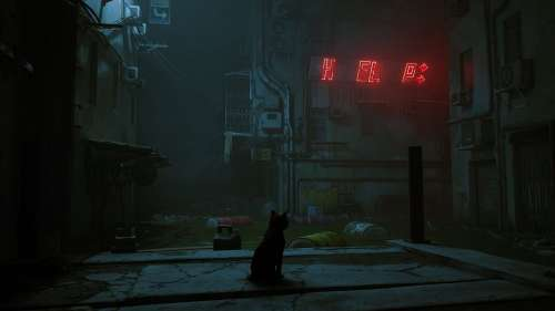 'Stray' Is A Game That Simulates What It's Like To Be A Cat