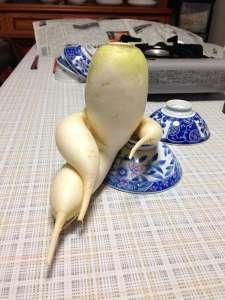 16 Fruits & Légumes Insolites