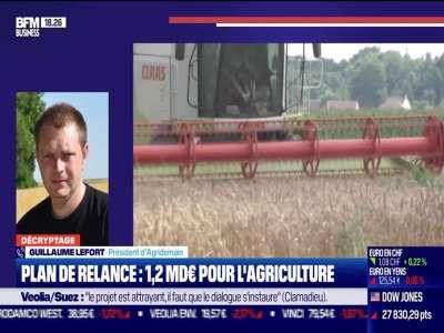 Décryptage: L'agriculture dotée de 1,2 milliard d'euros du plan de relance - 04/09
