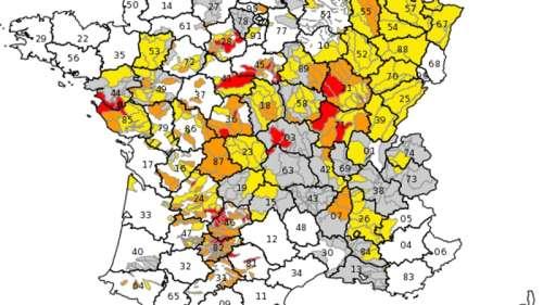Sécheresse: l'alerte s'étend à 64 départements