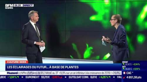 Culture Geek : Les éclairages du futur... à base de plantes, par Anthony Morel - 23/10