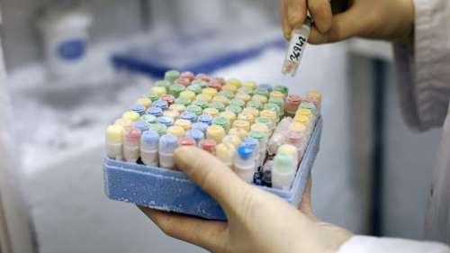 Loi bioéthique: l'Assemblée rejette le don d'ovocytes dans un couple de femmes