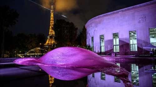 Nuit Blanche à Paris: le programme des expositions adapté au Covid-19