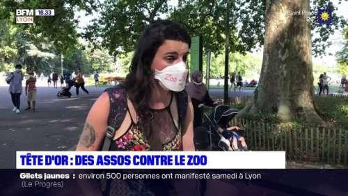 Tête d'Or: des assos contre le zoo