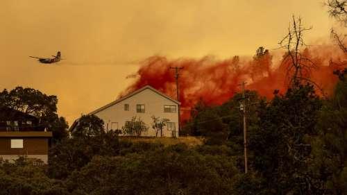 Plusieurs dizaines d'incendies ravagent la Californie en proie à une canicule historique