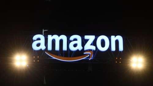 Amazon retire de son site français des poupées sexuelles à l'effigie d'enfants