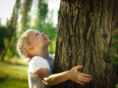 4 activités en forêt avec les enfants