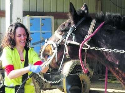 PORTRAIT. Dans l'Aude, Nina est dentiste pour chevaux