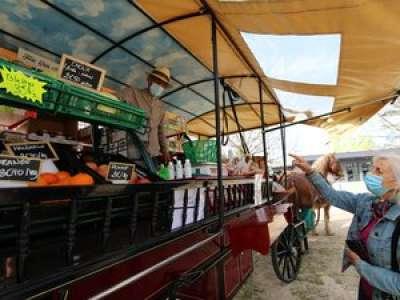 A Tarbes, l'hippo-épicerie parcourt la ville en calèche