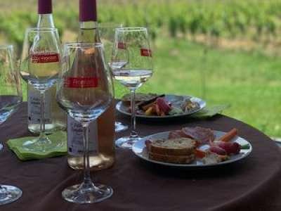 Sortir en Tarn-et-Garonne : un week-end pour prendre l'air