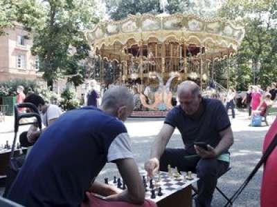 Toulouse : qui sont les joueurs d'échecs de la place Wilson ?