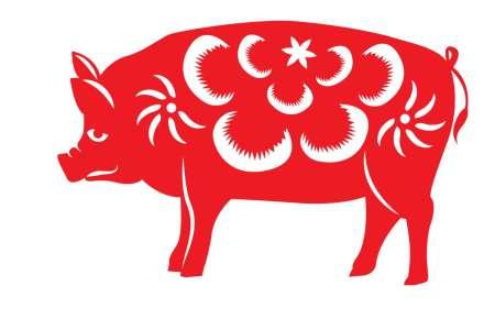 Compatibilité du Cochon avec les autres signes chinois