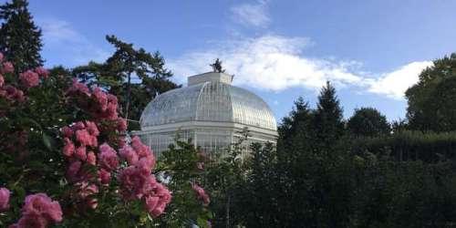 Les remarquables jardins Albert-Kahn, à Boulogne-Billancourt, à nouveau ouverts au public