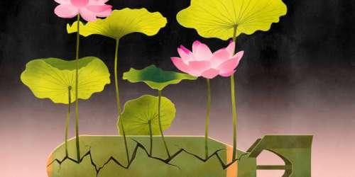 «Em», de Kim Thuy: le feuilleton littéraire de Camille Laurens