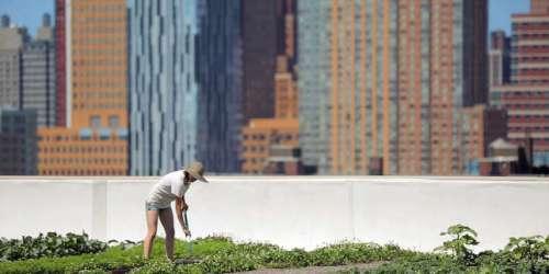 «Sur les toits des villes», sur Arte: à New York, on trinque avec les nuages