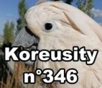 Bon weekend avec Koreusity n°346 un zap de 111 vidéos insolites