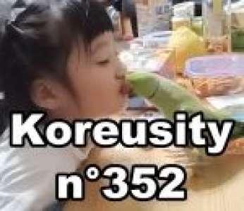 Bon weekend avec Koreusity n°352 un zap de 84 vidéos insolites