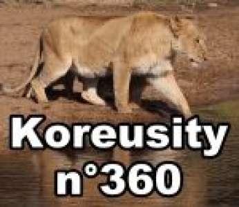 Bon weekend avec Koreusity n°360 un zap de 97 vidéos insolites