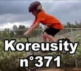 Bon confinement avec Koreusity n°371 un zap de 76 vidéos insolites