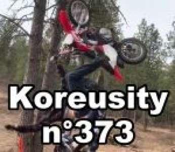 Bon confinement avec Koreusity n°373 un zap de 84 vidéos insolites
